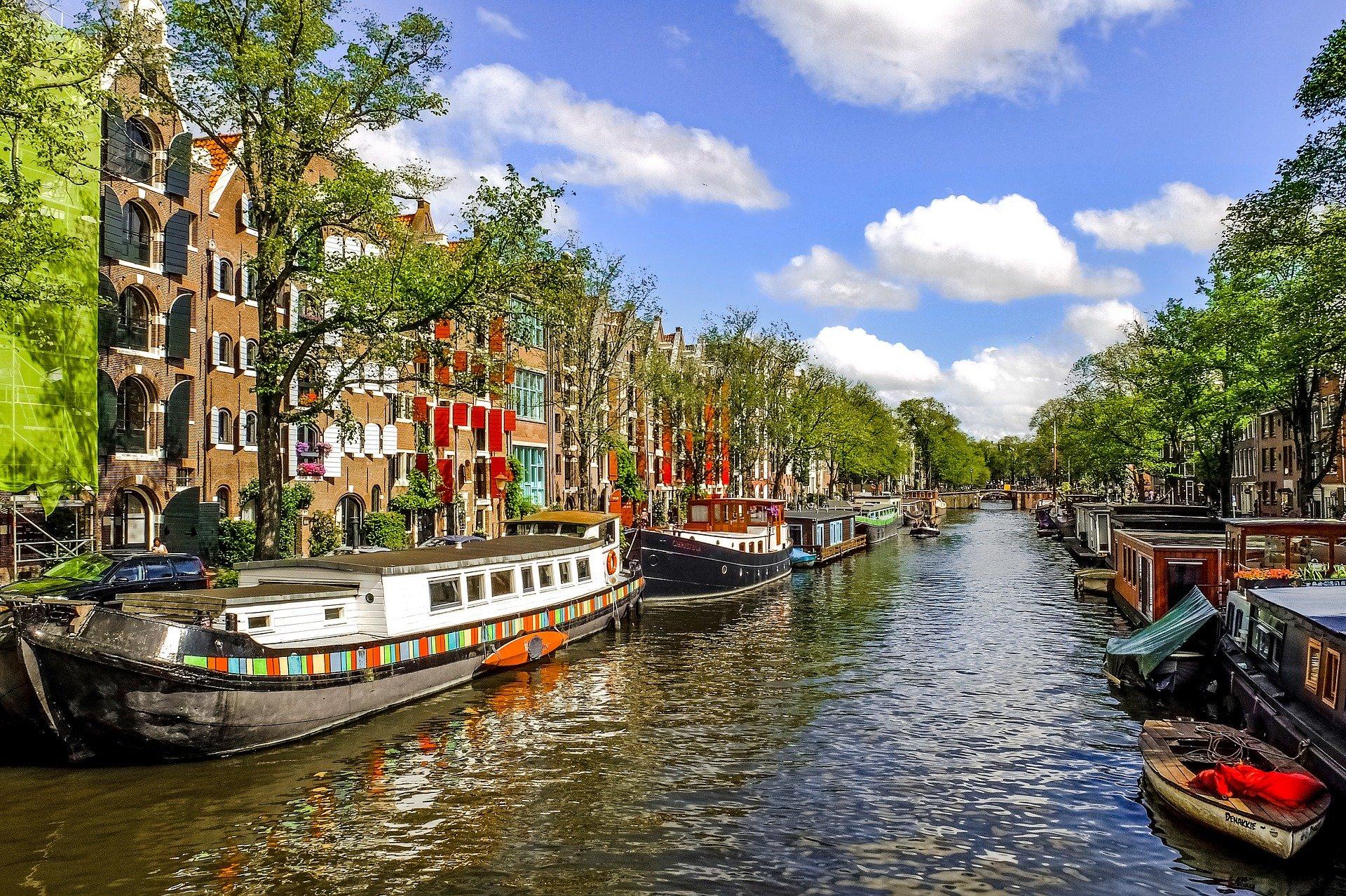 Umzug von Wien nach Amsterdam